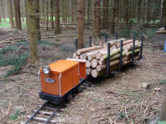 maximale Zugleistung der Lok